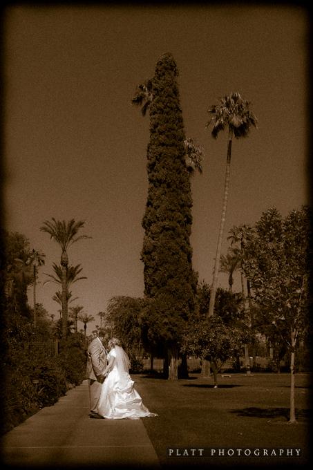 Wedding Portraits at the LDS Mesa Arizona Temple